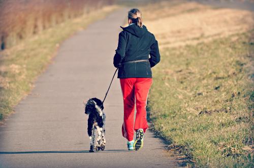 Exercise-jogg-dog